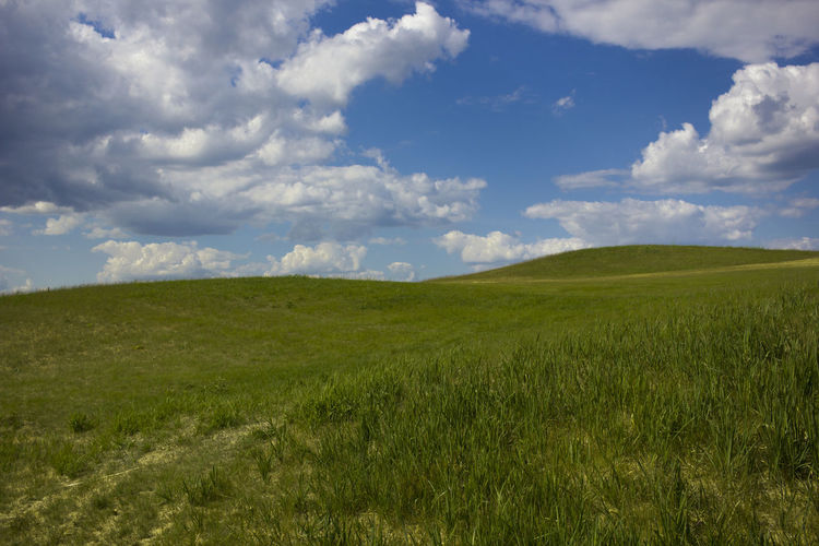 Beauty In Nature Cloud - Sky Day Environment Field Grass Green Color Horizon Horizon Over Land Land Landscape Nature No People Non-urban Scene Outdoors Plant Rolling Landscape Rural Scene Scenics - Nature Sky Tranquil Scene Tranquility