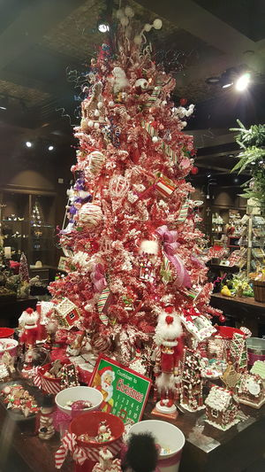 Christmas Around The World Gaylord Opryland Resort NASHVILLE,TENNESSEE Christmas Tree