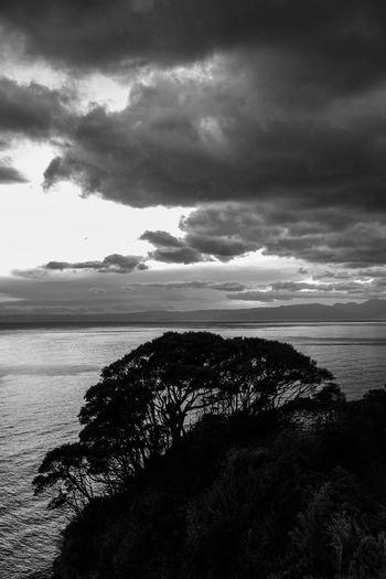 EyeEmNewHere Be. Ready. 江の島 Enoshima Japan Japan Photography Sea Trees Black And White Friday