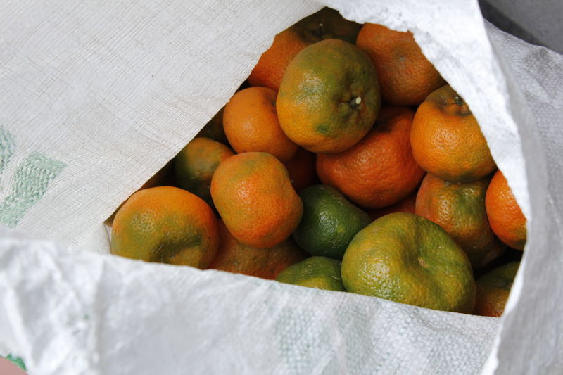 Field Work Bag Citrus Fruit Close-up Day Food Food And Drink Freshness Fruit Healthy Eating High Angle View Indoors  Market No People Orange - Fruit Orange Color