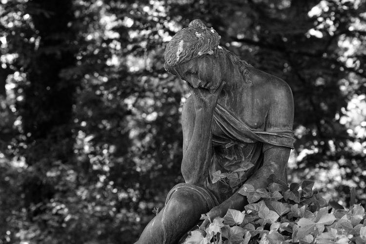 Unterwegs am Schloß Glienicke Black And White Berlin Berliner Ansichten Berlin Photography Outdoors Brunnenfigur Tree Statue Close-up Female Likeness Sculpture Sculpted Human Representation Virgin Mary Angel Art Carving - Craft Product
