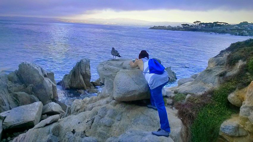 Capture The Moment Lovers Point Monterey Bay Oceancitycool Segull Homies Nature Photography People Photography What A View You Wish You Lived Here Monterey Ca