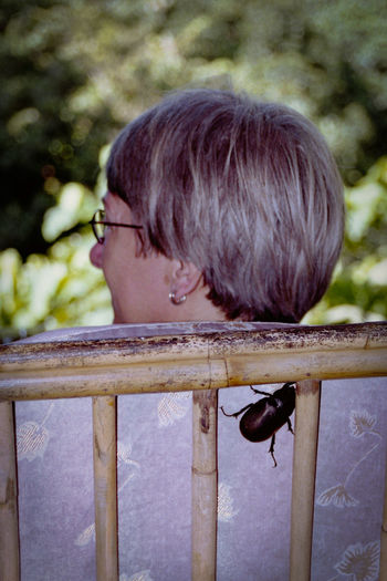 Just before she noticed... 135mm Beetle Film Film Photography Insect Unsuspecting