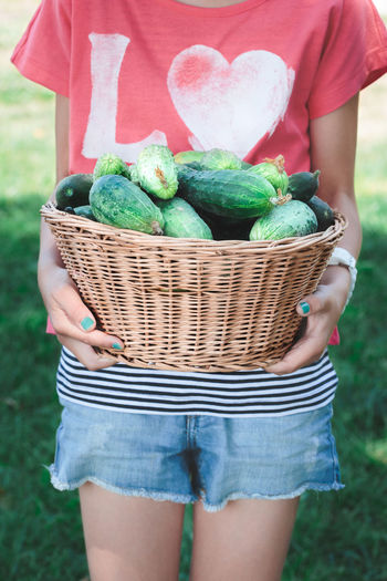 Girl holding wicker basket with cucumbers Basket Child Cucumber Day Food Fresh Freshness Freshness Front View Garden Girl Green Healthy Holding Natural Nature One Person Organic Outdoors Rustic Season  Summer Vegetable Vertical Wicker