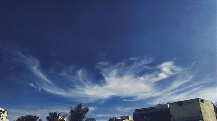 Sailing skies! Sky Skyline Sailing Blue Winter Clearskies Goodyear 2015  LastDay Love Terrace Urban Skyscape Photooftheday Picoftheday Instasky People Bangalore Indiapictures Photographersofindia India HTC Phoneography