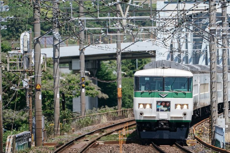 Go to hotspring IZU. Summer Atomosphere Train Coming Train Approaching Railroad Track Farewell 185 Odawara Rail Transportation Transportation Track Mode Of Transportation Public Transportation Train Train - Vehicle Plant Tree Built Structure Land Vehicle No People Travel