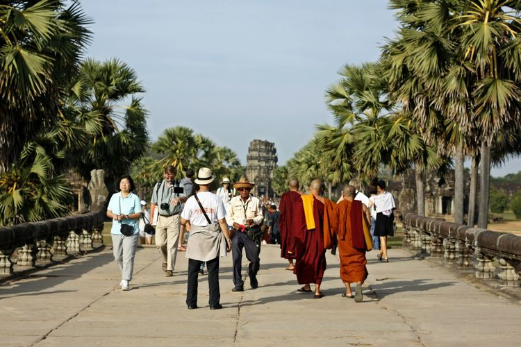 Adult Adults Only Budhistmonk Day Full Length Monk  Monk Budhist Prayer Monk In Angkor Wat, Siem Reap, Cambodia Monk In Temple Space Monks Monks And Tourist Monks In Cambodia Monks In Motion Monks In Temple Monks Walk Outdoors Palm Tree People Tree Young Adult