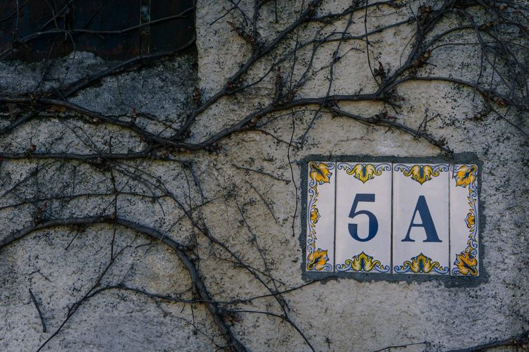 Text Communication Building Exterior Housenumber House Number Wall Architecture Close-up Day Drastic Edit Taking Photos EyeEm Gallery Still Life Urban Exploration Plants Dried Plant