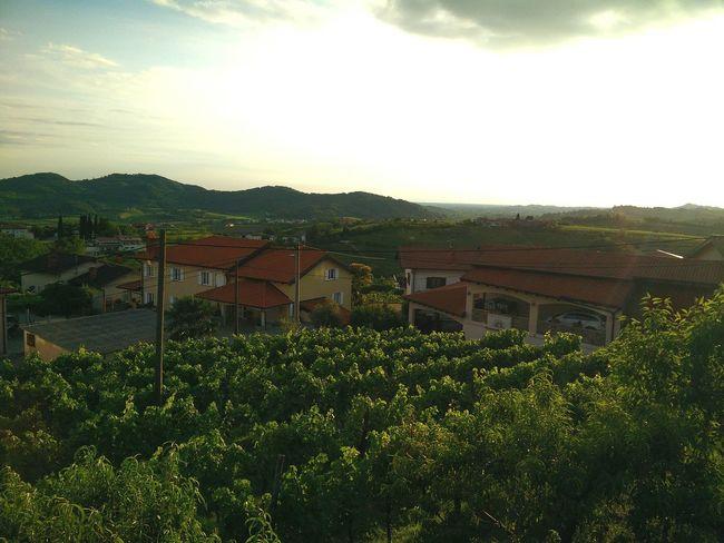 Medama Slowenia Landscape Afernoon