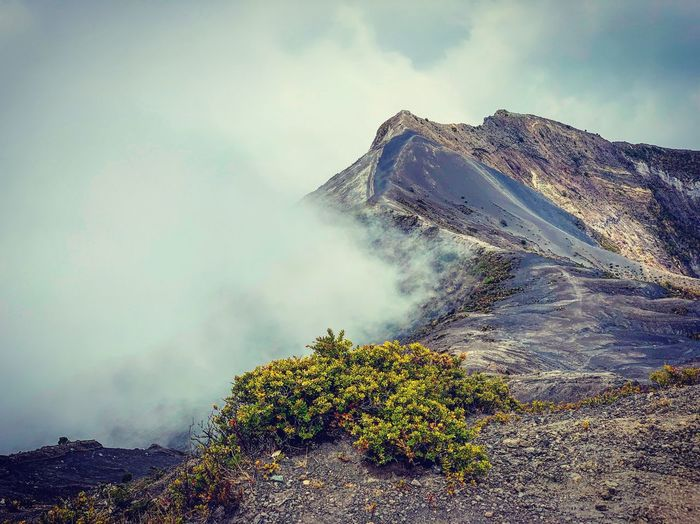 Cloud Fog Sky Cloud - Sky Mountain Beauty In Nature Plant Nature Tree Tranquility Scenics - Nature No People Non-urban Scene Land Water Tranquil Scene Day Geology Volcano Environment Outdoors Power In Nature