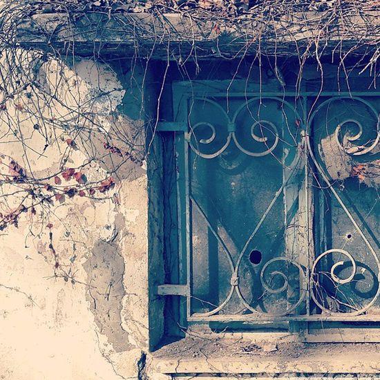 - تو مهربان ِمن، بیا کنار پنجره و پیش از آن که قد ِنیمه تیرسان ِمن کمان شود بهار را به من نشان بده بگو که سرو ِسرفراز ِما دوباره در چمن َچمان شود به چهره ها و راه ها چنان نگاه می کنم که کور می شوم چه مدّتی ست دلبرا، ندیده ام تو را؟ [شعر: رضا براهنی] پنجره شلیک گلوله خانه متروک بابلسر