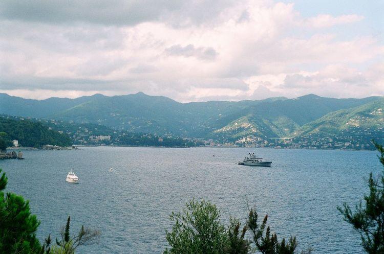 Portofino bay view. Film Italy Nature Outdoors Portofino Summer Travel Tree Trees Zenit