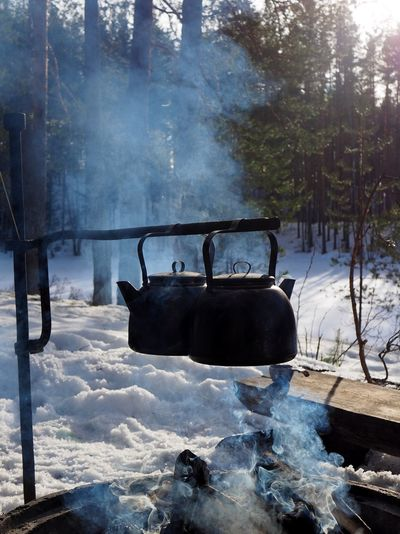 Tree Winter Snow Cold Temperature Smoke - Physical Structure Plant Nature Day Land No People Tea Coffee Campfire Open Fire Fire Outdoor Cooking Coffeepot Coffee Pot Pot Teapot Tea Pot Wilderness Coffee Break Hiking Forest Cold Smoke Smoky Chaga Tea Hanging Outdoors Outdoor