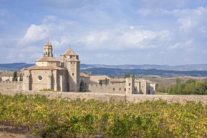 Beautiful view of the ancient Poblet Monastery in Catalonia, Spain, and a vineyard in autumn Autumn Monastery Poblet Travel Ancient Architecture Architecture Beauty In Nature Building Exterior Built Structure Cloud - Sky Day Field History Landscape Monks Mountain Nature Religion Season  Sky Wineyard