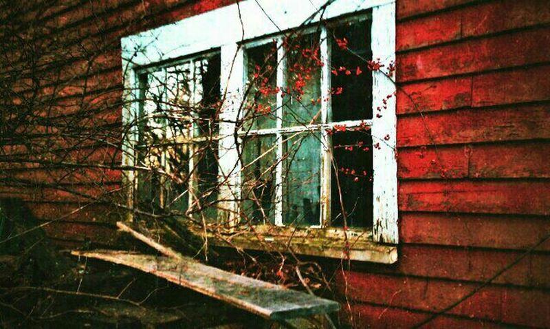 Abandoned Old Barns Rural Decay Filthyfeeds Windowshotwednesday Rurex Barnsnipers Grimewindow Filthgonecountry Windowpeeker