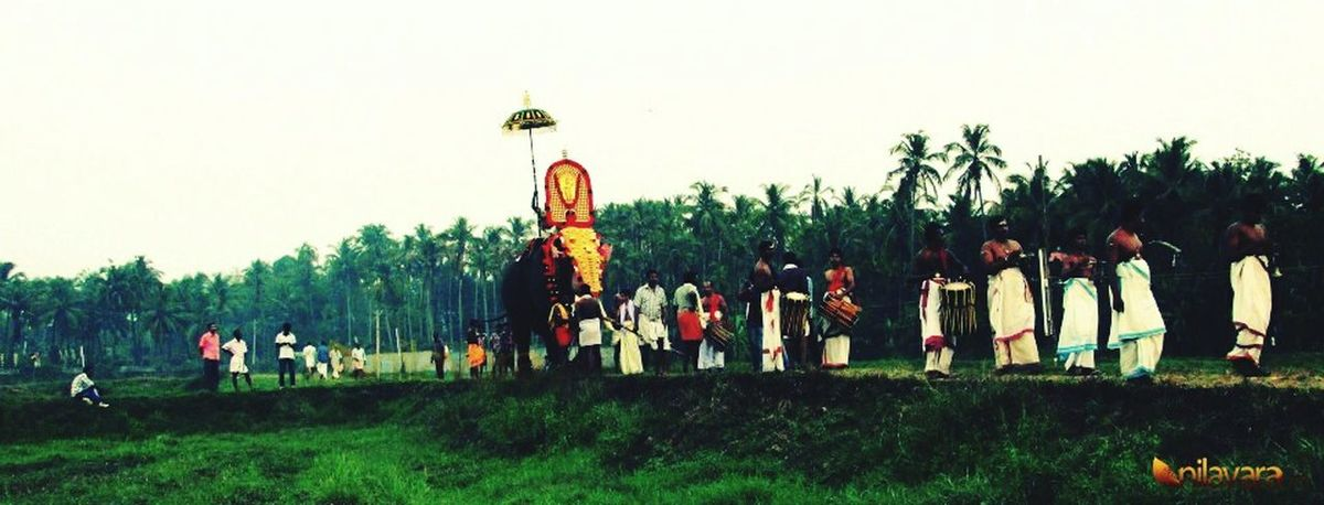 Internet Addiction Tree Grass Large Group Of People Clear Sky Person Men Green Color Outdoors Casual Clothing Growth Day Weekend Activities Tourism Non-urban Scene Vacations Tranquil Scene kerala Kerala_tourism Kerala The Gods Own Country ;) Place Of Worship Beauty In Nature