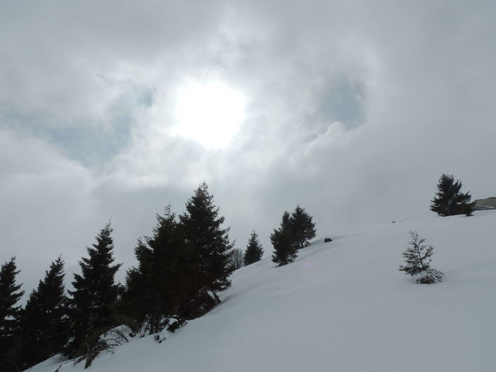 Beauty In Nature Cima Gra Cloud - Sky Cold Temperature Day Landscape Monte Grappa Mountain Nature No People Outdoors Scenics Sky Snow Tranquil Scene Tranquility Tree Weather Winter