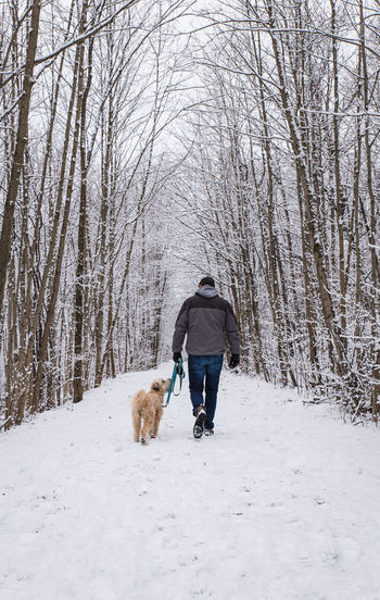 Rear view of person walking with dog on snow
