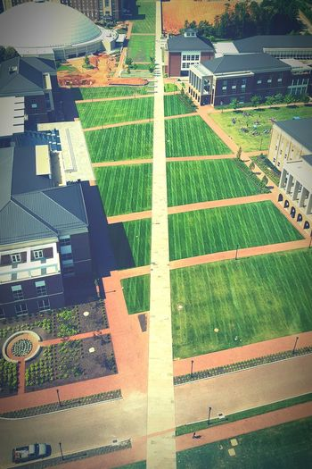 Narrow Path Path Pathway Narrow Narrow Path Liberty University University Campus Campus Liberty University Lynchburg  Virginia Field Cut Grass Grass Grassy Green Outdoors Aerial View Color Aerial View Pattern Field Architecture Building Exterior Green Color Growing