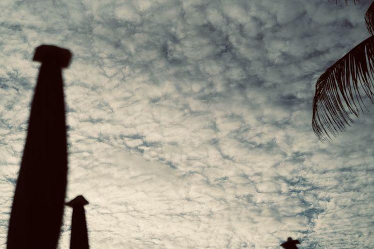 Sky Blue Sky On