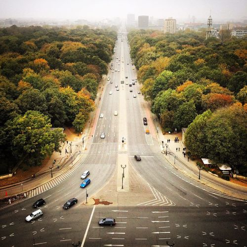 High angle view of road amidst trees seen from victory column