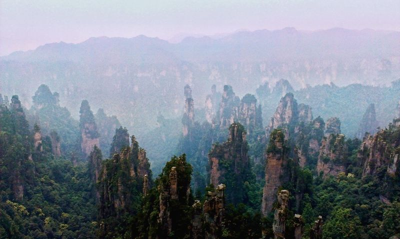 Forest Social Issues Fog Pinaceae Nature Tree Mountain Pine Woodland Pine Tree Landscape Beauty In Nature Sunset No People Snow Outdoors Freshness Space Sky Day The Beauty Of China China BEIJING北京CHINA中国BEAUTY Zhangjiajie Hunan Province, China ZhangjiajieNationalPark TCPM The Architect - 2017 EyeEm Awards The Great Outdoors - 2017 EyeEm Awards Neighborhood Map The Great Outdoors - 2017 EyeEm Awards EyeEm Selects Lost In The Landscape