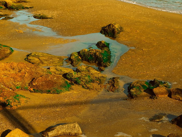 High angle view of rocks on beach