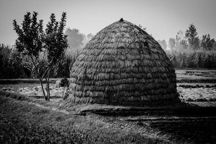 Simple living in nature EyeEmNewHere Editor's Picks Monochrome Photography Blackandwhitefriday EyeEm Nature Lover EyeEm Gallery EyeEm Best Shots Be. Ready. TheWeekOnEyeEM Black And White Friday EyeEmNewHere Tree Tranquility Sky Rural Scene Outdoors Landscape Hut Human Hand House Hay Bale Grass Field Beauty In Nature Serenity Rustic Nature Crafted Beauty