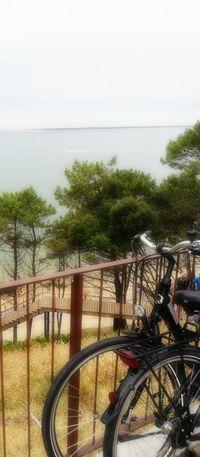 Sun, Sea &.... Cycles! Horizon view.