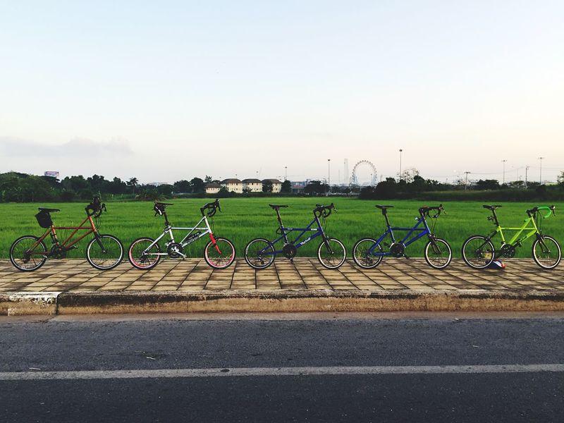 Bikecycle Bike Tyrellthailand TyrellFX Photooftheday จักรยาน Cycling Myactivity