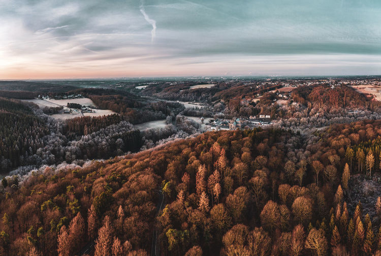 Aerial view of forest against sky during winter