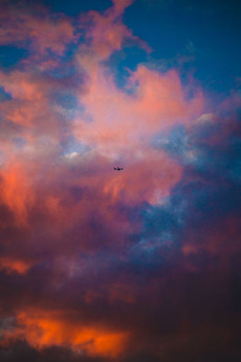 Plane flying pass Sydney during sunset City Australian Landscape Australia EyeEmNewHere Sydney Sunrise Sunlight Scenics Epic Moody Sky Moody Sunset Plane Cloud - Sky Sky Low Angle View Flying Beauty In Nature Nature Scenics - Nature No People Airplane Air Vehicle Sunset Transportation The Creative - 2018 EyeEm Awards The Great Outdoors - 2018 EyeEm Awards The Street Photographer - 2018 EyeEm Awards Summer Road Tripping The Traveler - 2018 EyeEm Awards