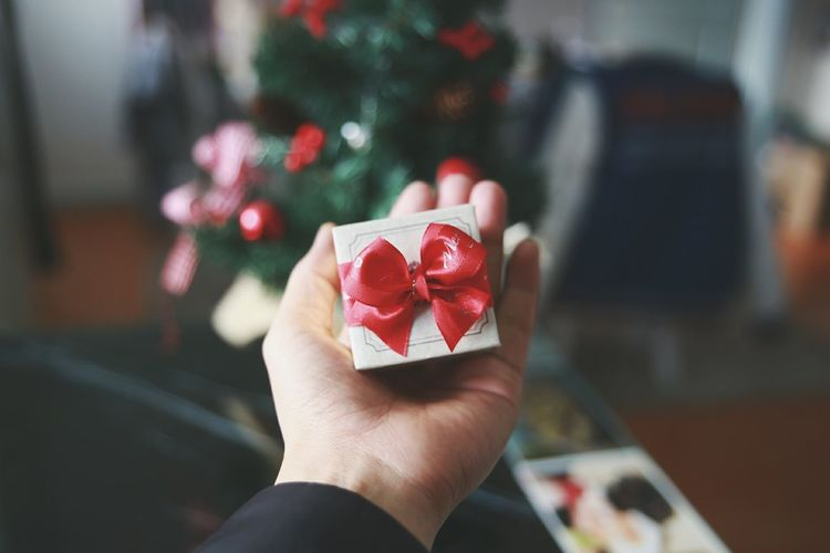 Cropped image of man holding christmas present