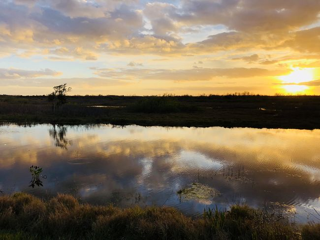 sunset on the bayou Cypress Marsh Sunset_collection Swamp Beauty In Nature Cloud - Sky Day Nature No People Outdoors Reflection River Scenics Sky Sunset Tranquil Scene Tranquility Tree Water