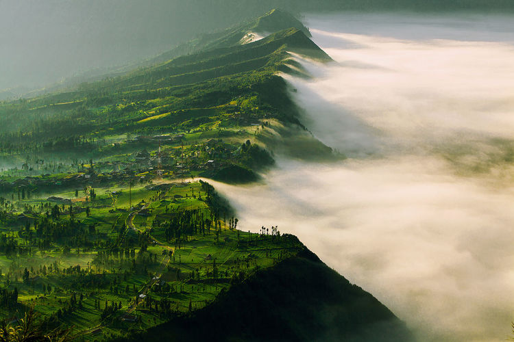 Scenic view of cemoro lawang village