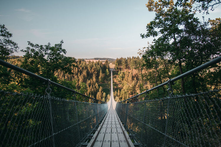 Diminishing perspective of footbridge against sky in forest