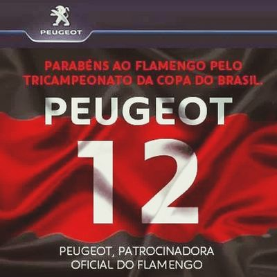 Flamengo <3 Campeao S2