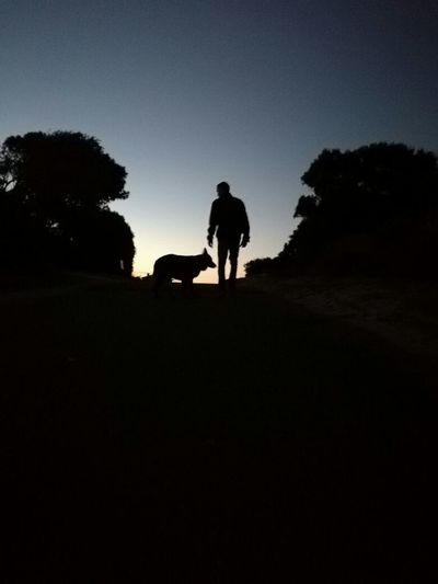Beauty In Nature Domestic Animals My Year My View Nature One Animal Outdoors Real People Silhouette Sunset