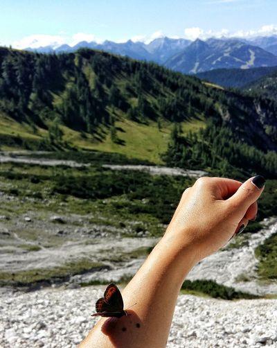 fly away buterfly Romaniantraveler Mountain Adventure Do What You Love Butterfly Mountain Mountain View Austria Mountain Landscape Nature Nature Photography Picioarecalatoare ExploreEverything Explore Austria Explore Lovetotravel Romaniangirl Travelgirl Traveltheworld Haihui Haihuiprinlume Picioareleteleleu
