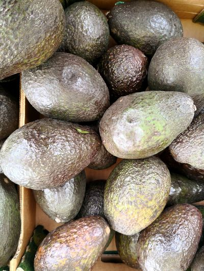 Avocado background full frame Avocados Avocados Avocado Plant Full Frame Market Stall Full Frame Market Stack Close-up Food And Drink For Sale Various Price Tag Display Market Stall Arrangement Fish Market Farmer Market Street Market Variety Stall Raw Window Display Flower Market Retail Display