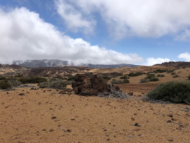 Teide National Park, Tenerife 🇪🇸 Clouds SPAIN Cloud - Sky Tenerife Nofilter Volcano Teide Teide National Park Hiking Cloud - Sky Sky Beauty In Nature Tranquil Scene Land Tranquility Scenics - Nature Nature Landscape Remote Idyllic Mountain Outdoors