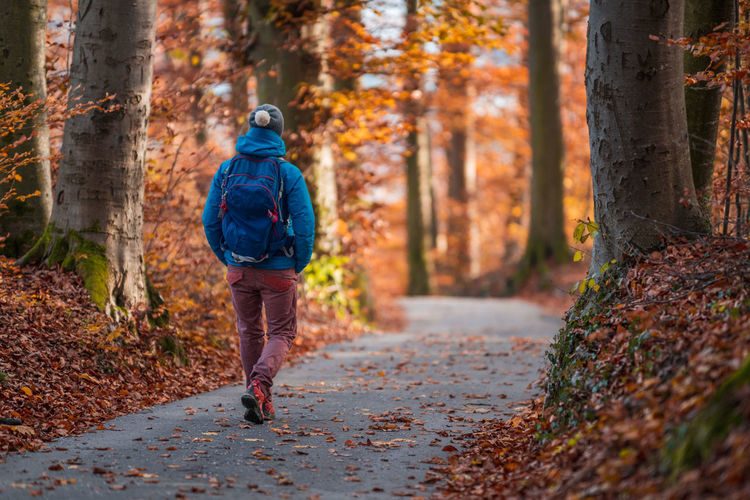 Rear view of woman walking on footpath in forest during autumn