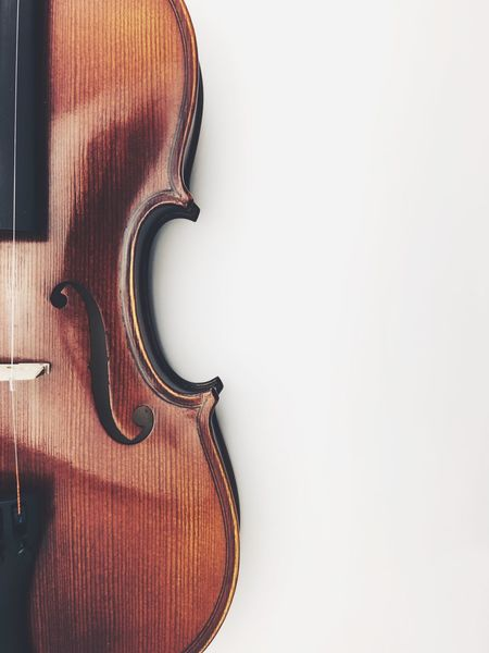 violin Music Musical Instrument Violin Arts Culture And Entertainment Musical Instrument String String Instrument Wood - Material White Background Copy Space Classical Music Studio Shot No People Close-up