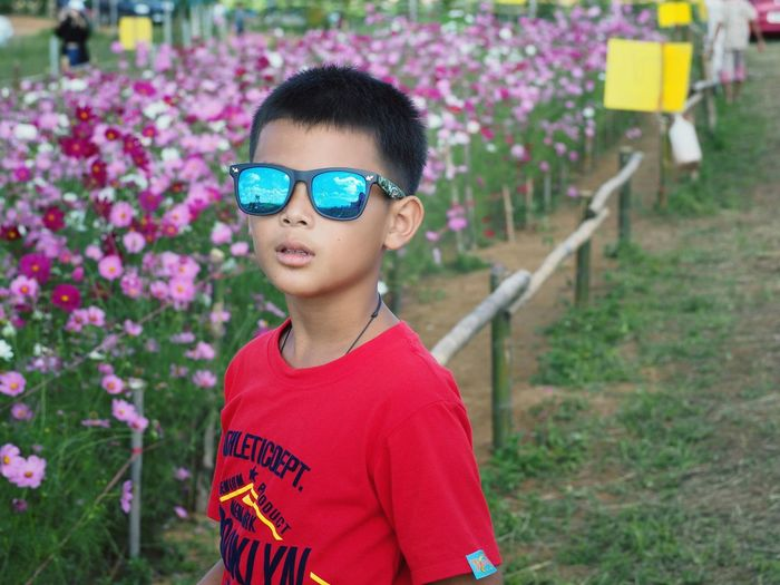 Cute asian boy portrait Cute Asian  Flower Child Childhood Eyeglasses  Males  Portrait Boys Headshot Smiling Standing