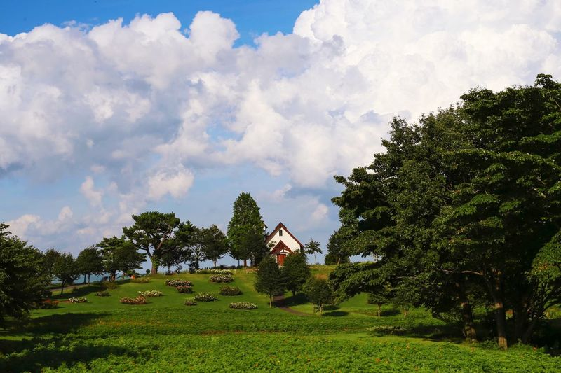 The Church On The Hill Tree Cloud - Sky Sky Built Structure Architecture Nature Green Color Grass Day House