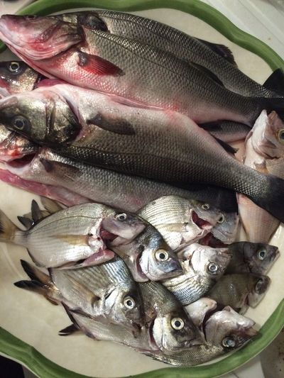 Fish Eating Sea Food Pesce Bonappetit Dinner Time What's For Dinner? A Taste Of Life Omega3 Omega 3