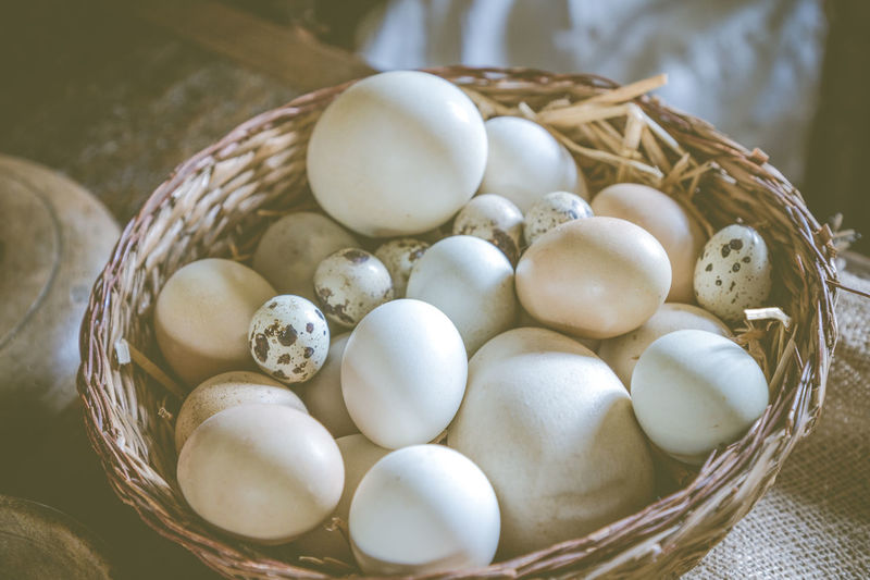 A basket of assorted different types of eggs at Sulgrave Manor kitchen. Large Eggs Basket Close-up Easter Egg Egg Basket Eggs Food Food And Drink Freshness High Angle View Indoors  No People Small Eggs