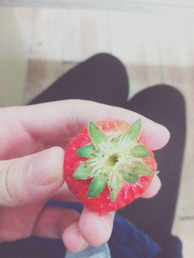 Strawberry Soooocute  ♡¨̮⑅