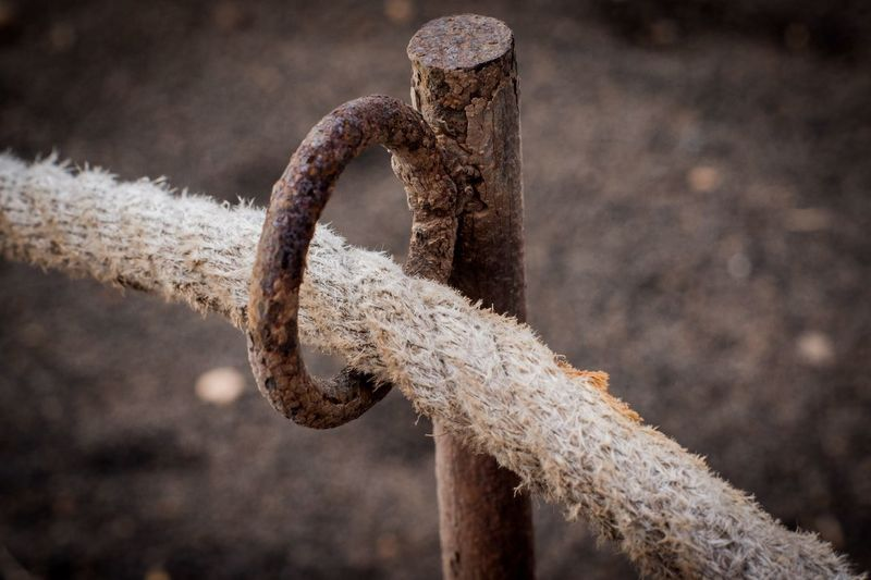 Hold me gently Best Pictures Authentic Arts Ronny Focus On Foreground No People Close-up Day Rope Rusty Metal Strength Outdoors Nature Sunlight Old Textured  Still Life Hanging Single Object Tied Up Post Equipment Pattern