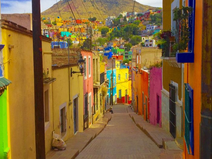 Guanajuato, México Multi Colored Magical Secret Places Local Life Oldman Dog Natural Beauty Landscape Traditional Culture Amazing Destination Wanderlust